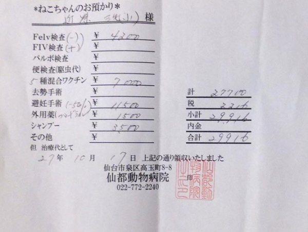 kaikei201510_5