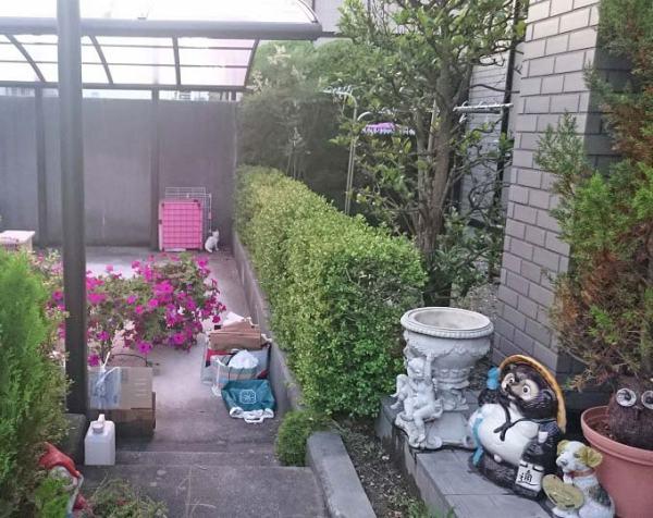 chibishiro20160703_1